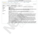 Neuro-Code-Patents-8